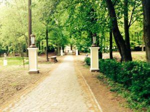 Pałac Biedrusko-4254